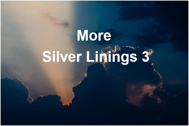 More Silver Linings 3